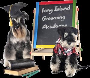 long-island-grooming-academy-courses